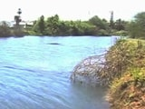 Video: Residents Clean-Up Chennai Lakes