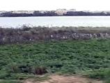Video : कर्नाटक : विधानसभा स्पीकर ने किया झीलों का दौरा