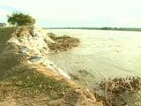 Video : Assam's Embankments: Crores Washed Away