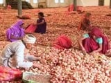 Video : मध्यप्रदेश में राशन की दुकानों के जरिए 1 रुपये किलो प्याज बेचेगी राज्य सरकार