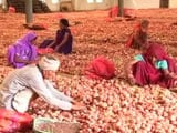 Video: In Madhya Pradesh, Government To Give Away Onions For Rs. 1 Per Kilo