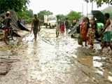 Video : Kaziranga National Park Eviction Drive Turns Violent, 2 Killed