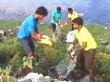 Video : Chennai Citizens Step Forward To Save Lakes