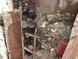 Video : न्यूज प्वांइट : मुंबई के बांद्रा में बिल्डिंग गिरने से 6 लोगों की मौत