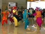 New Zealand Welcomed With Bhangra Beats in Mohali