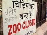 बर्ड फ्लू के चलते दिल्ली का चिड़ियाघर 45 दिनों के लिए बंद