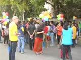 Video : Thousands March In Delhi For Queer Pride With Banners Of Solidarity