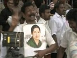 Video : Jayalalithaa Being Monitored, Party Flag Back To Full-Mast