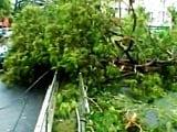 Video : No Cash, No Card. How Cyclone Vardah Has Crippled Chennai's Cashless Drive