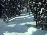 Video : A Drive Through Gulmarg Wrapped In Blanket Of Snow