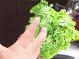 Introduce Kale In Your Diet For A Healthy You