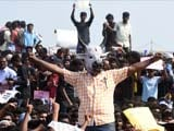 Video: As Jallikattu Protests Swell, Tamil Nadu Looks At Legal Way Out