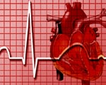 Miscarriages raise heart attack risk