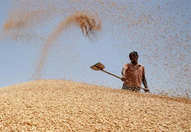Panic Buying Could Impact Global Food Supply Chain: United Nations Arm