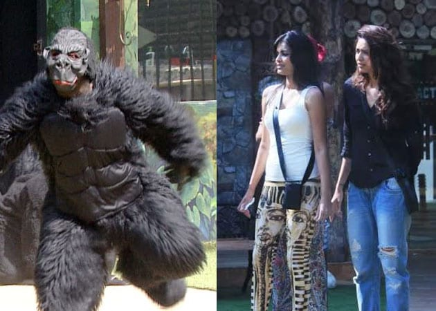 Bigg Boss 8: Gorillas? Bears? It's a Zoo in There