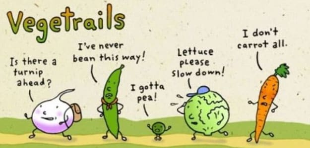 10-funny-food-puns-to-brighten-your-day-7