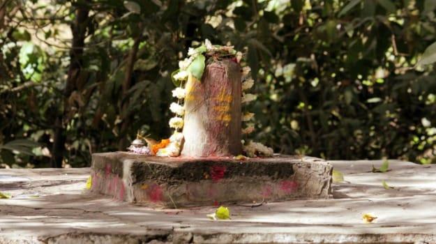 Mahashivratri 2015: Why is Milk So Auspicious?