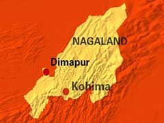 Army's Cheetah Helicopter Crashes in Dimapur, None Injured