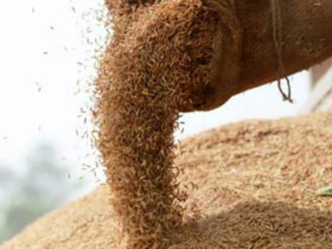 Tripura to Implement Food Safety Act With More Sops