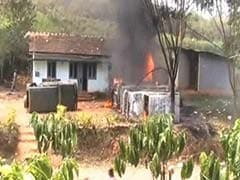 After Tiger Kills Woman in Tamil Nadu's Nilgiris District, Angry Villagers Torch Vehicles