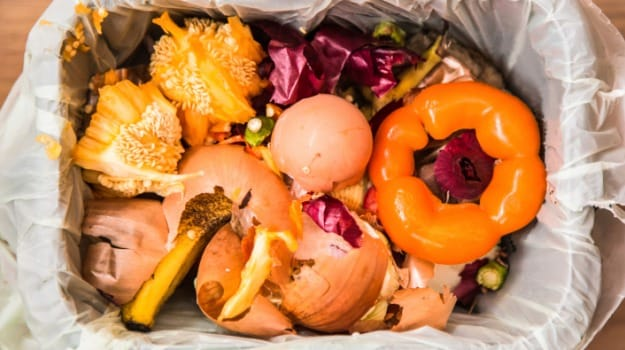 Food Waste Is Becoming A Serious Economic and Environmental Issue