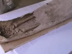 Mystery Coffin: Woman Found Buried Next to Richard III's Grave