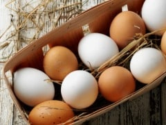 End Procurement of Eggs from Caged Hens: Mahajan to McDonald's