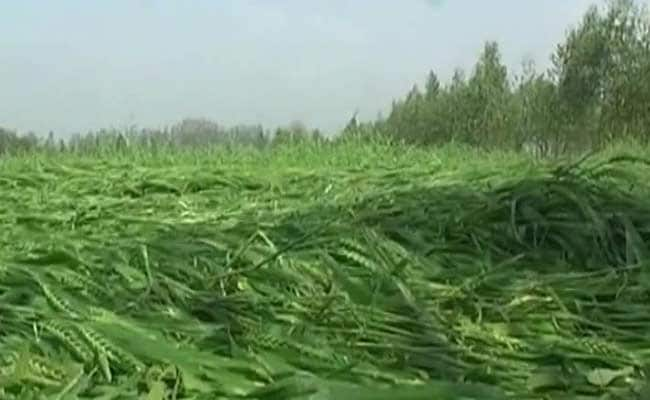 Case Against Army Officer For Allegedly Damaging Crop