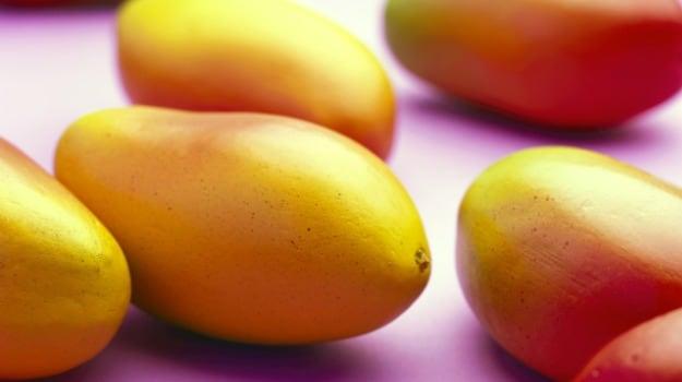 'Modi Mango' - A New & Rare Variety