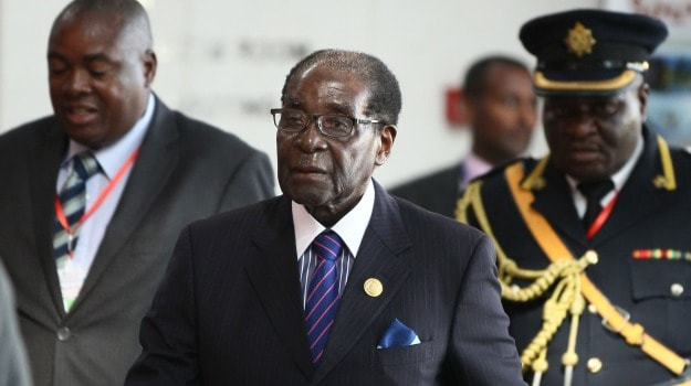 Elephants and Antelopes on the Menu! Zimbabwe President's Wild Birthday Bash