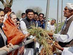 Sonia Gandhi Meets Haryana Farmers Hit by Unseasonal Rains; BJP Government Calls it 'Tourism'