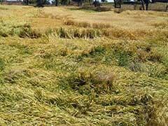 बाल्यान ने अखिलेश को लिखी चिट्ठी, किसानों का कर्ज और बिजली बिल माफ करें
