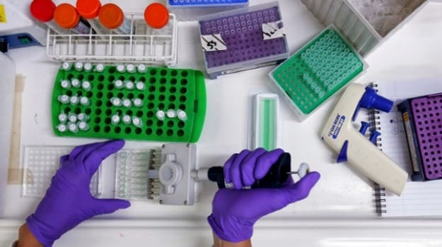 Personalised Cancer Vaccines Show Early Signs of Promise in Trial