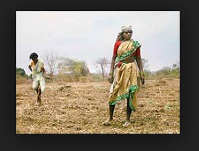 मध्यप्रदेश में एक माह में 17 किसानों ने खुदकुशी की