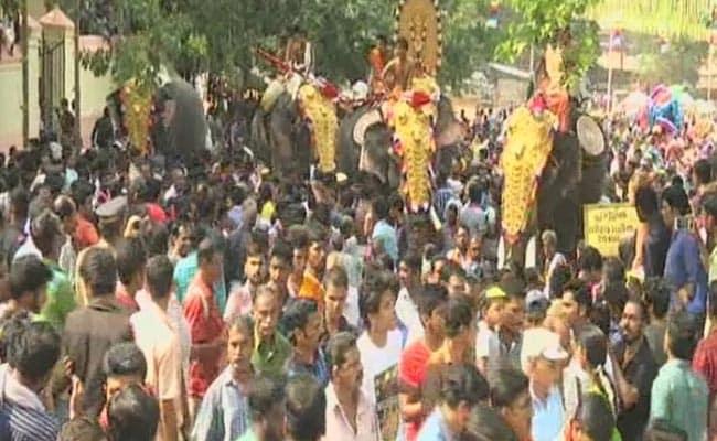 In Kerala, an Elephant Parade Amid Protests