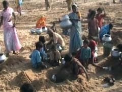 Heat Wave Drives Villagers to Dig Into River Bed