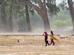More Than 1100 Die in Andhra Pradesh, Telangana Heat Wave