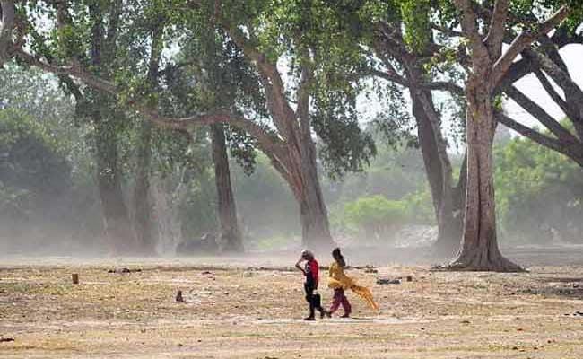 Heat Wave Kills Over 1,100 in Andhra Pradesh and Telangana