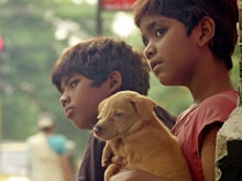 National Award Winner <i>Kaakkaa Muttai</i> to Release in June