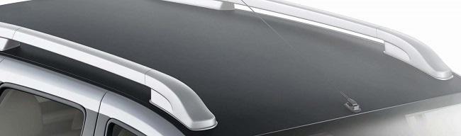 Nissan Terrano special edition