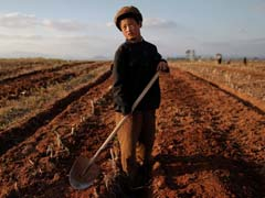 UN Warns of Coming Hunger in North Korea