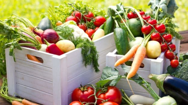 The Whole Truth About Organic Food: Is it Health or Hype?