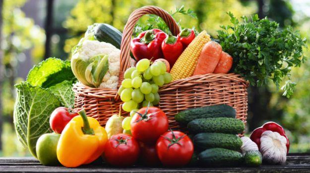 PM Modi's Mega Food Parks to Help Curb Food Wastage
