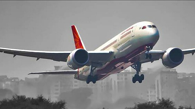 Passenger Finds Lizard in His In-Flight Meal. Air India Says it's a Hoax!