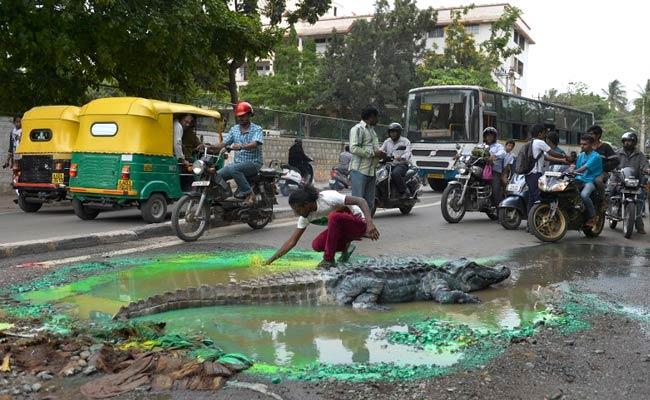 When Bengaluru Found a Crocodile on a Main Street