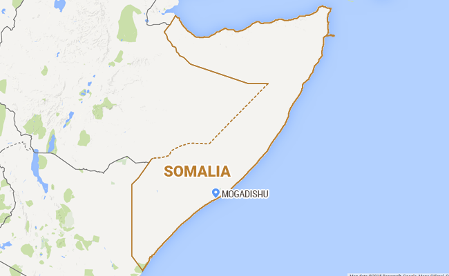 An Elephant Returns To Somalia For First Time In 20 Years
