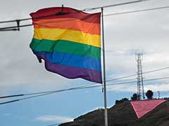 Russian MP Urges Facebook Blockage Over Rainbow Flag