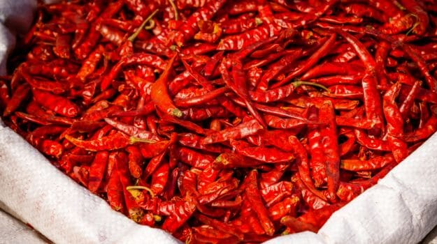 many-shades-of-red-chillies-of-india-from-sizzling-sensations-to-mild-marvels-4