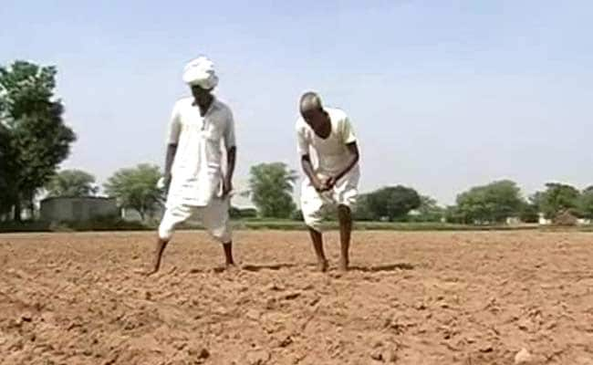Thousands Of Farmers Get Less Than Rs 5 As Crop Insurance In Maharashtra