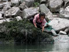 Drought Puts North Korean Children's Lives at Risk, Says UNICEF